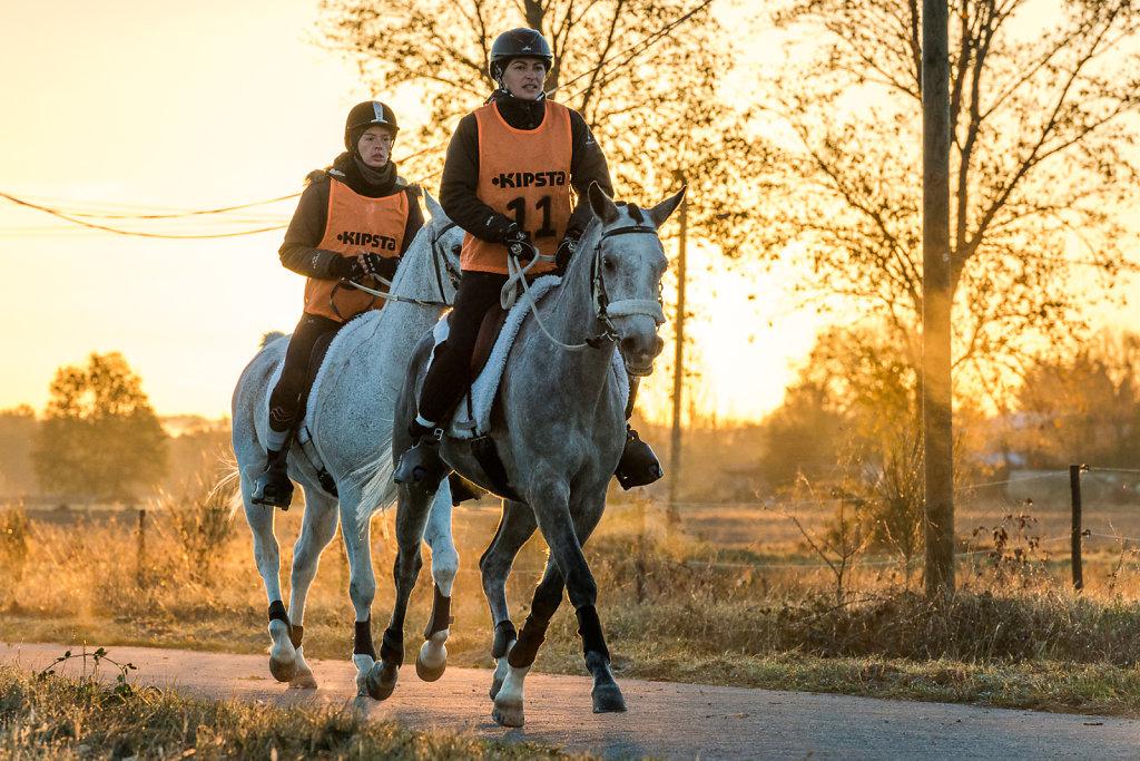 Endurance Equestre Pamiers