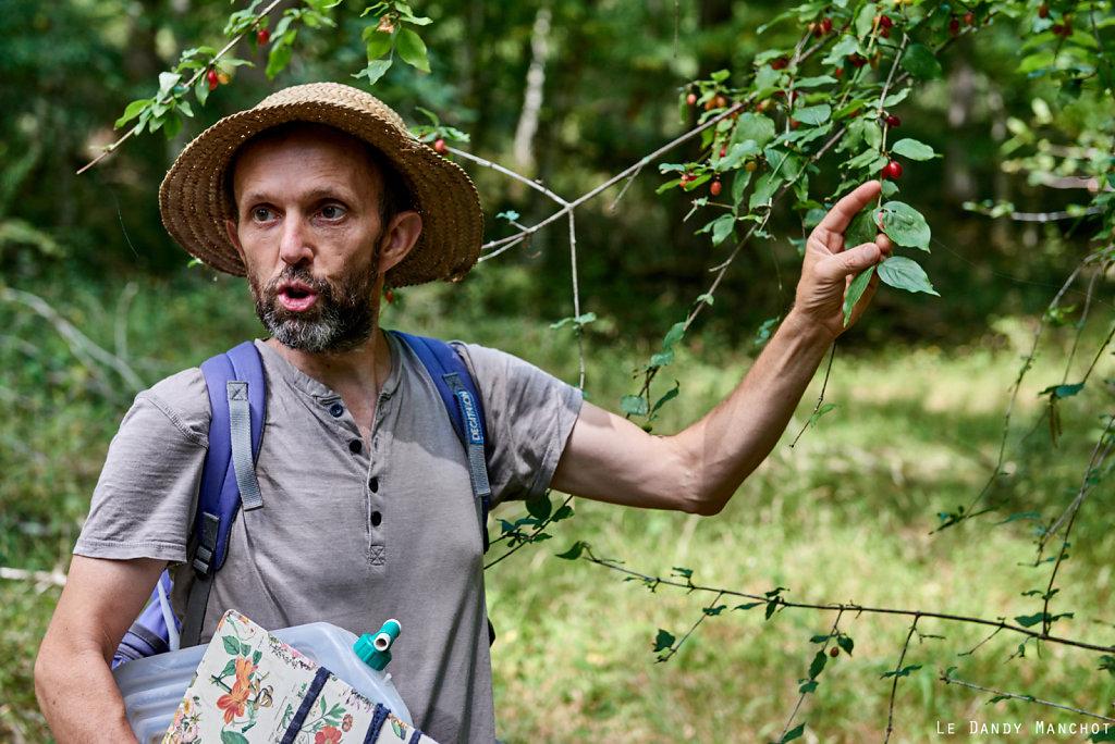 Atelier Promenade en forêt de Grésigne